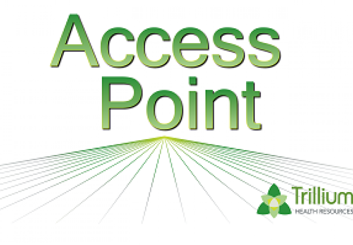 Access Point Logo