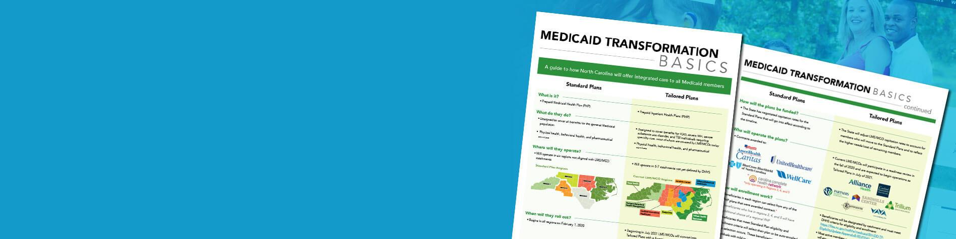 Medicaid Transformation PDF screenshots